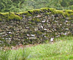 walling-in-cumbria